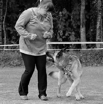 Käytösneuvonta-koirille-Koirien-hyvinvointikeskus